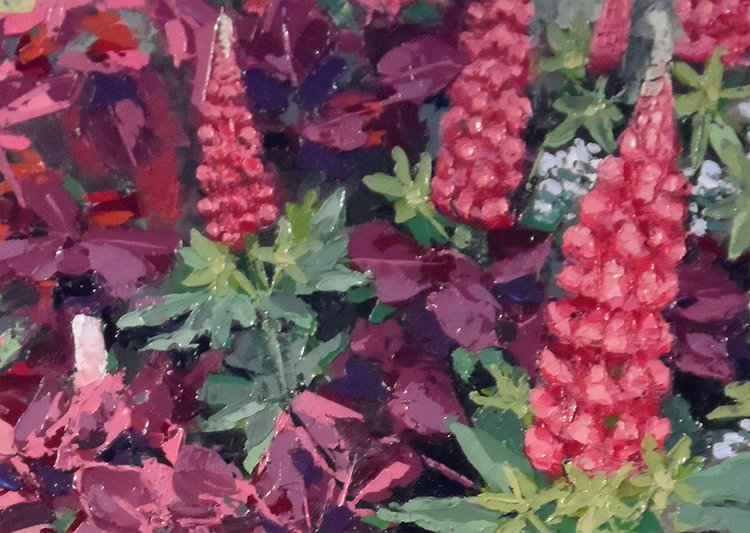 lupins_detail