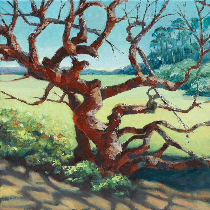 Arana Gulch Oak (2017) - Private Collection